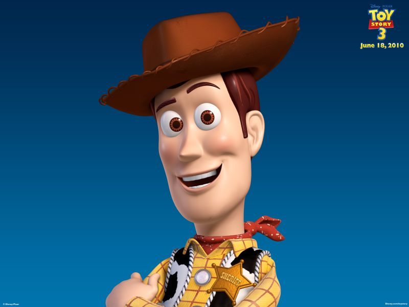 Woody Headshot Toy Story 3 Wallpaper 800x600